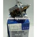 TERMOSTAT HY ( Original ) 25500-22600