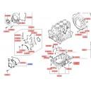 Capac inferior distributie ( Original ) 21350-22001 Hyundai I10, Getz